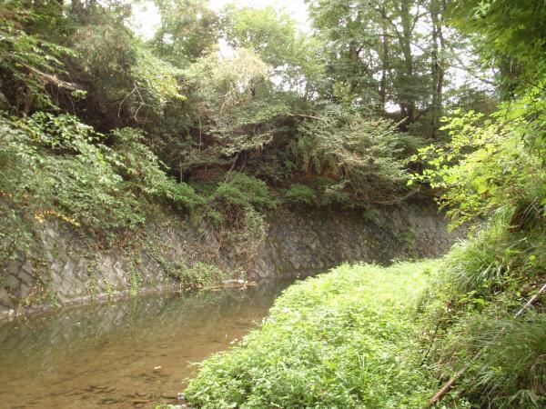 東京炭鉱跡7