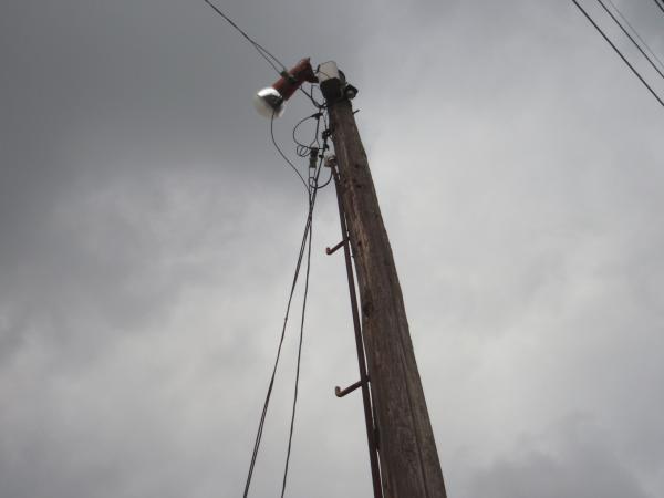 木製電柱9