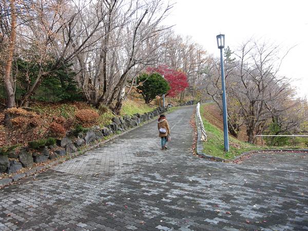 天神山緑地 坂