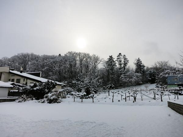 大雪 朝日