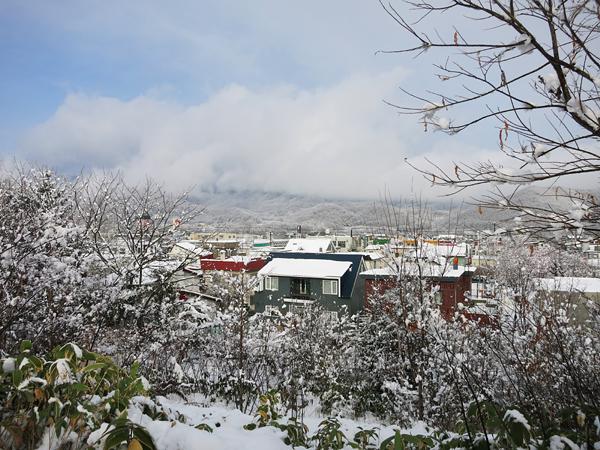 大雪 風景