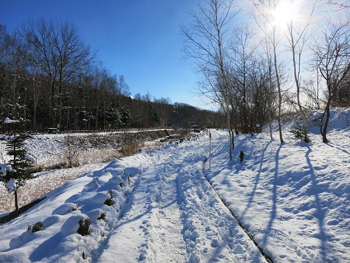 穴の川 雪 風景