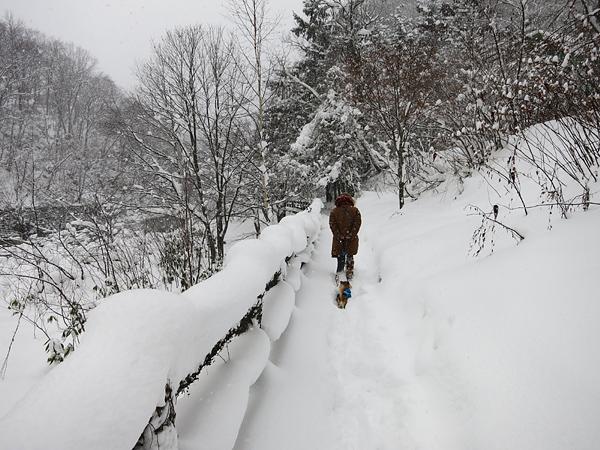 定山渓 二見公園 川沿い