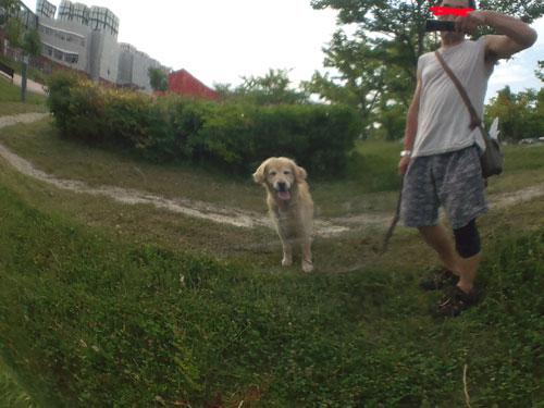 b-022_20120816053301.jpg