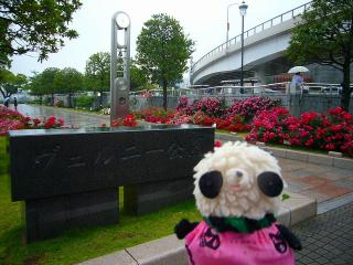 雨のヴェルニー公園