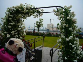 白いバラのアーチと潜水艦