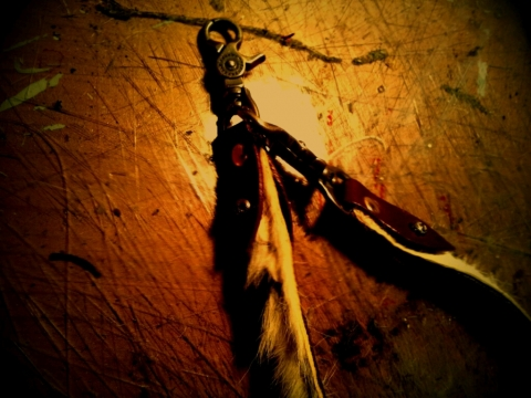 lento_20131209185936.jpg