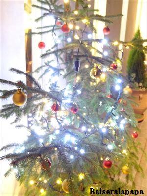 クリスマスDSC01294_R