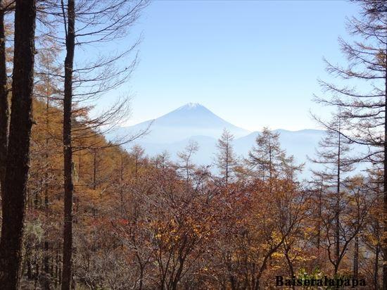 櫛形山DSC02071_R