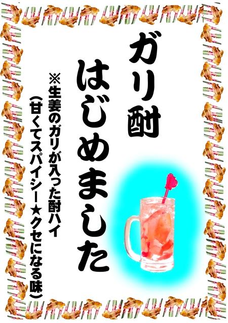 ガリ酎2弁当4-28
