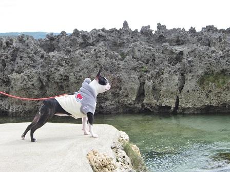 沖縄① 109
