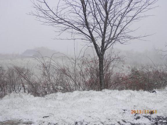 初雪 2013