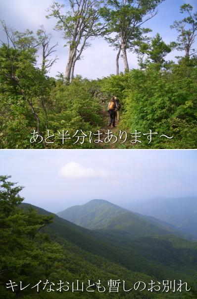 suzudai2010060513.jpg