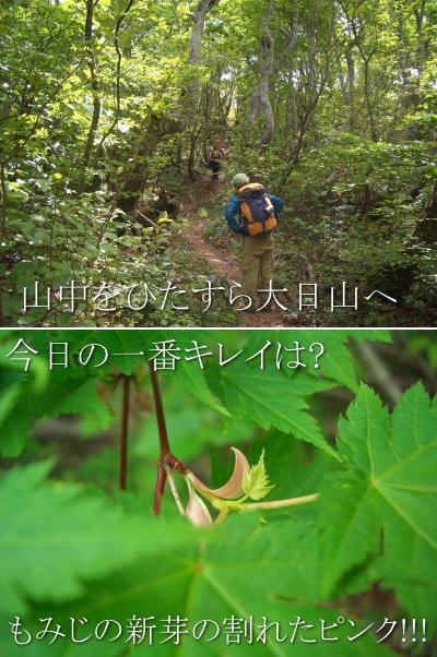 suzudai201006058.jpg