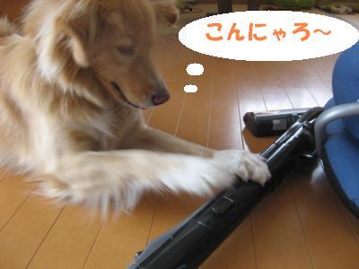 302_convert_20111024152631.jpg