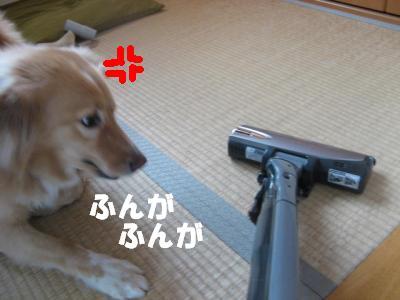 304_convert_20111024152713.jpg
