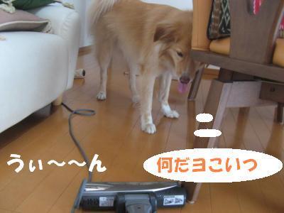 306_convert_20111024152802.jpg