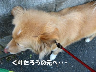 8976_convert_20120127190137.jpg
