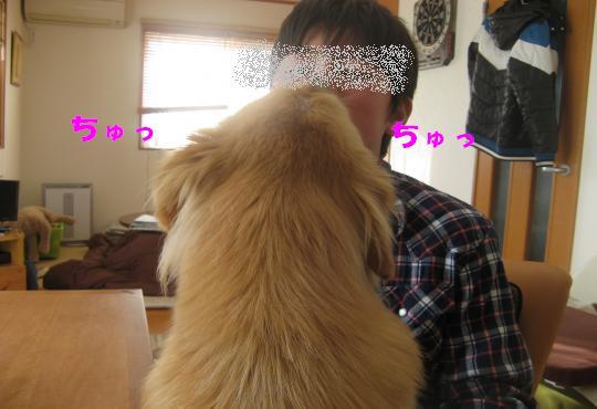 9026_convert_20120130212757.jpg