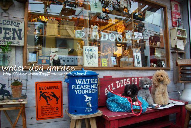 water dog garden 299