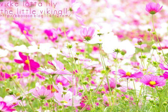 昭和記念公園 319