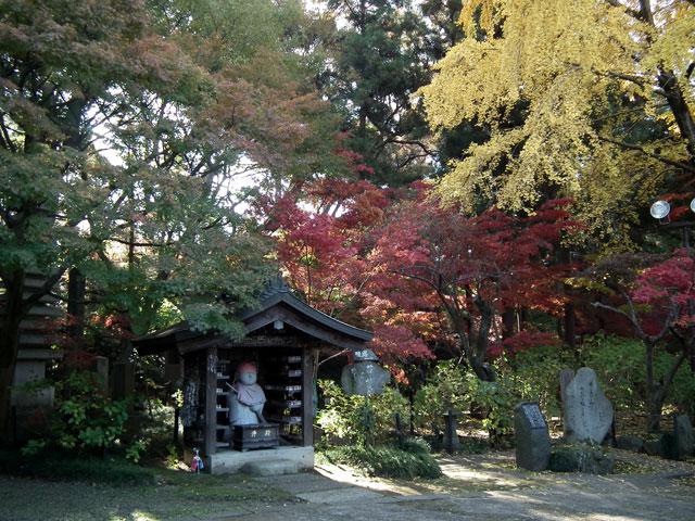 本土寺の紅葉(5)