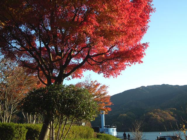 相模湖湖畔の紅葉(1)