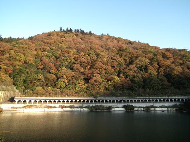 相模湖湖畔の紅葉(4)