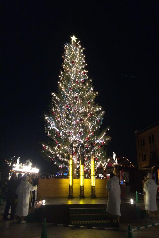 085-クリスマスツリー
