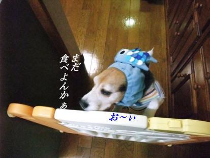 コピー ~ DSCF0876