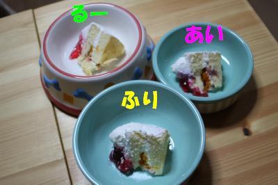 2010-1225-cake01.jpg