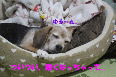 ai-0119-oheya01.jpg