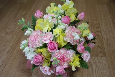 flower-20120125.jpg