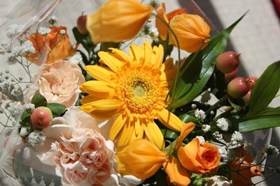 flower-20120925.jpg