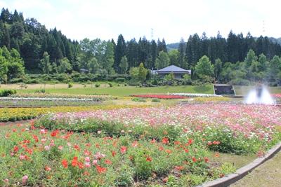 flowerpark-20120624.jpg