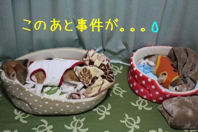 freeai-0131-oheya01.jpg
