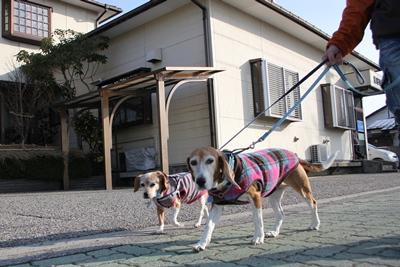 friai-20121217-sanpo05.jpg