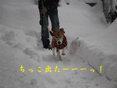 frida-20120201-oniwa01.jpg