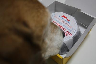 frida-20121021-cake01.jpg