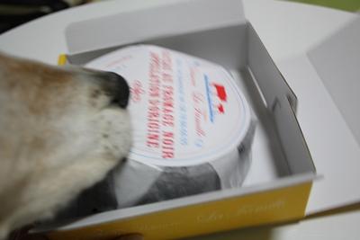 frida-20121021-cake02.jpg