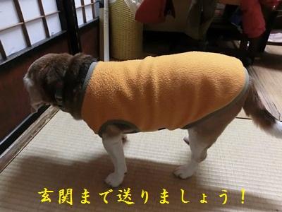 rookie-20120131-jikka02.jpg