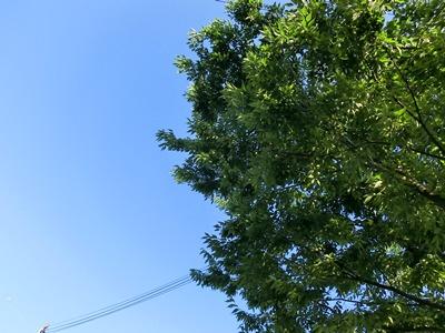 sky-20120628.jpg