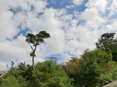 sky-20121020.jpg