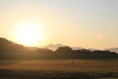 sun-20120908.jpg