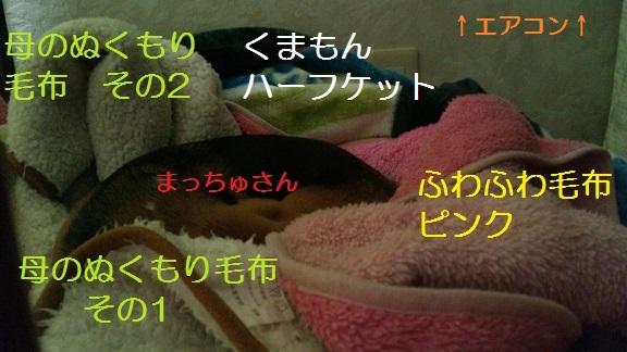 SBSH1086[1]