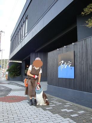 伊東温泉(アンジン前)