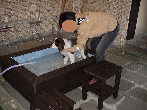 ワンコ専用洗い場