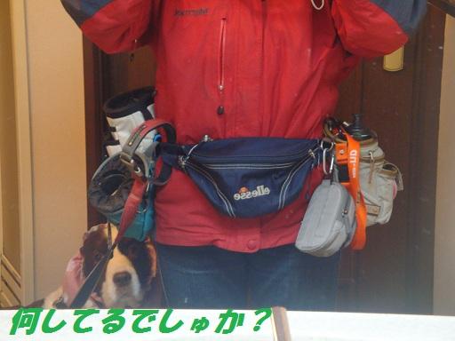 お散歩用ウエストバッグ+ジャスミン