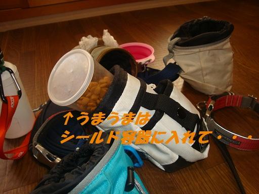 お散歩バッグ 4