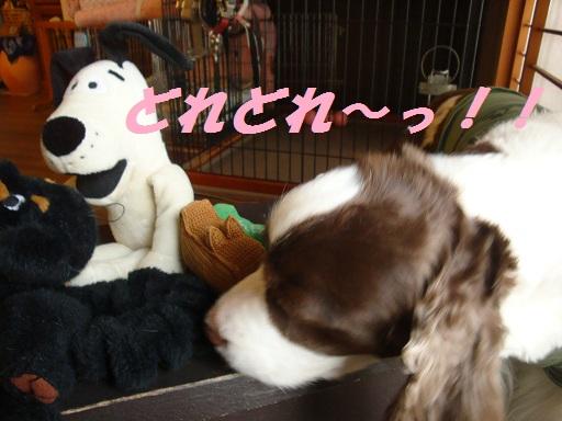 おもちゃとジャスミン 1